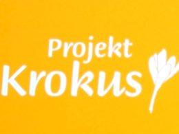 krokus2 (1)